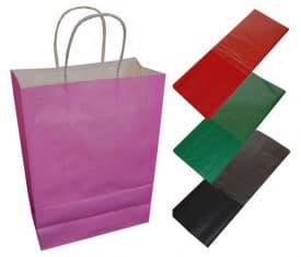20 Fuschia Pink Paper Twist Handles Party Gift Bags & Coloured Tissue Paper