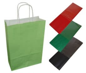 20 Light Green Paper Twist Handles Party Gift Bags & Coloured Tissue Paper