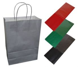 20 Silver Paper Twist Handles Party Gift Bags & Coloured Tissue Paper