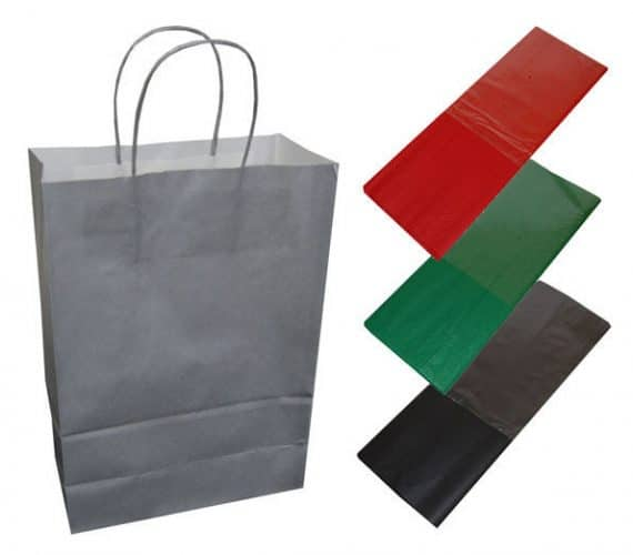 20 Silver Paper Twist Handles Party Gift Bags Coloured Tissue