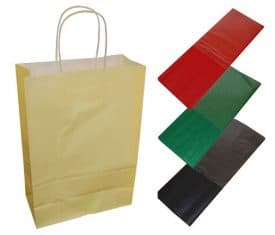 20 Cream Paper Twist Handles Party Gift Bags & Coloured Tissue Paper